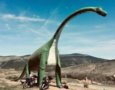 恐龙足迹之路